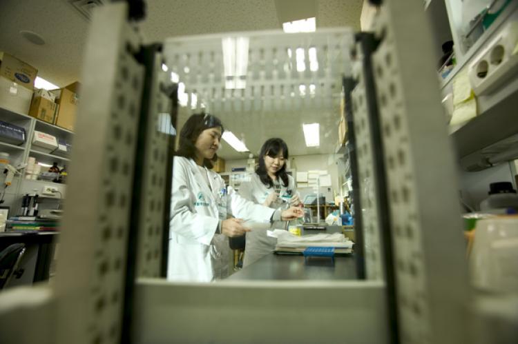 диагностика и лечение в клинике асан